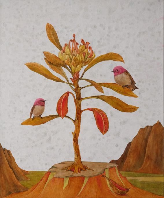 rose robin and embothrium tinctorium copy.jpg