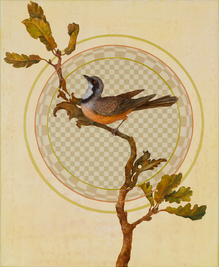rapers rufous whistler copy.jpg
