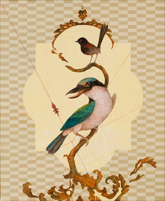 rapers superb kingfisher copy.jpg