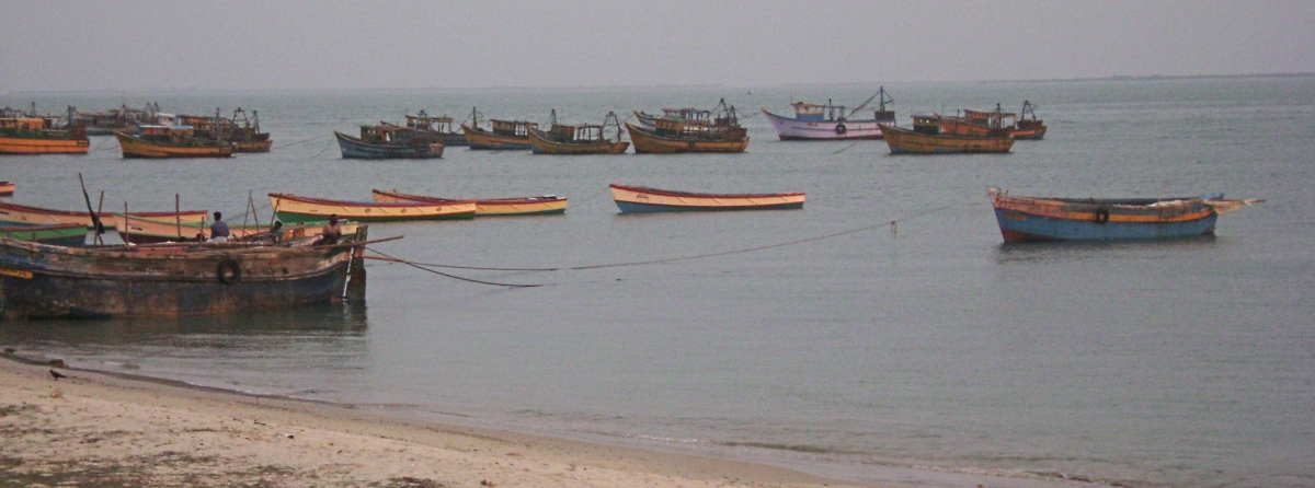 Fishing boats on the Gulf of Mannar. Photo via Marcus334/Wikimedia Commons
