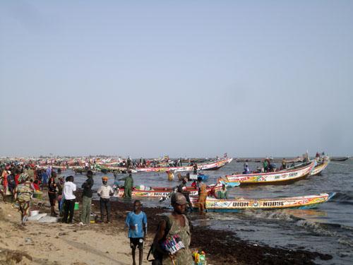 The bustling fishing port of Joal, Senegal.Andrés M. Cisneros-Montemayor
