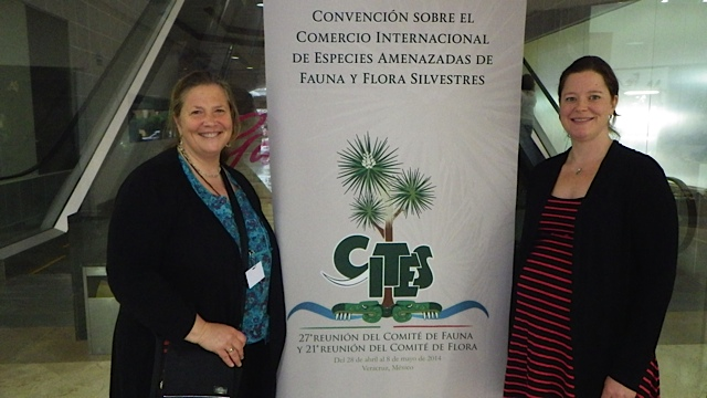 Amanda Vincent (left) and Sarah Foster (right) at the 27th CITES Animals Committee Meeting in Veracruz, Mexico.
