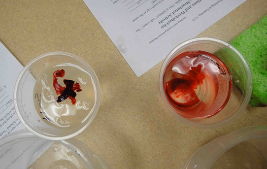 The mysterious red dye that sits at the surface in one cup and spread throughout in the other