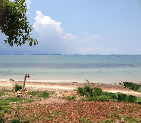 Photo by Paul Ferber, Marine Conservation Cambodia