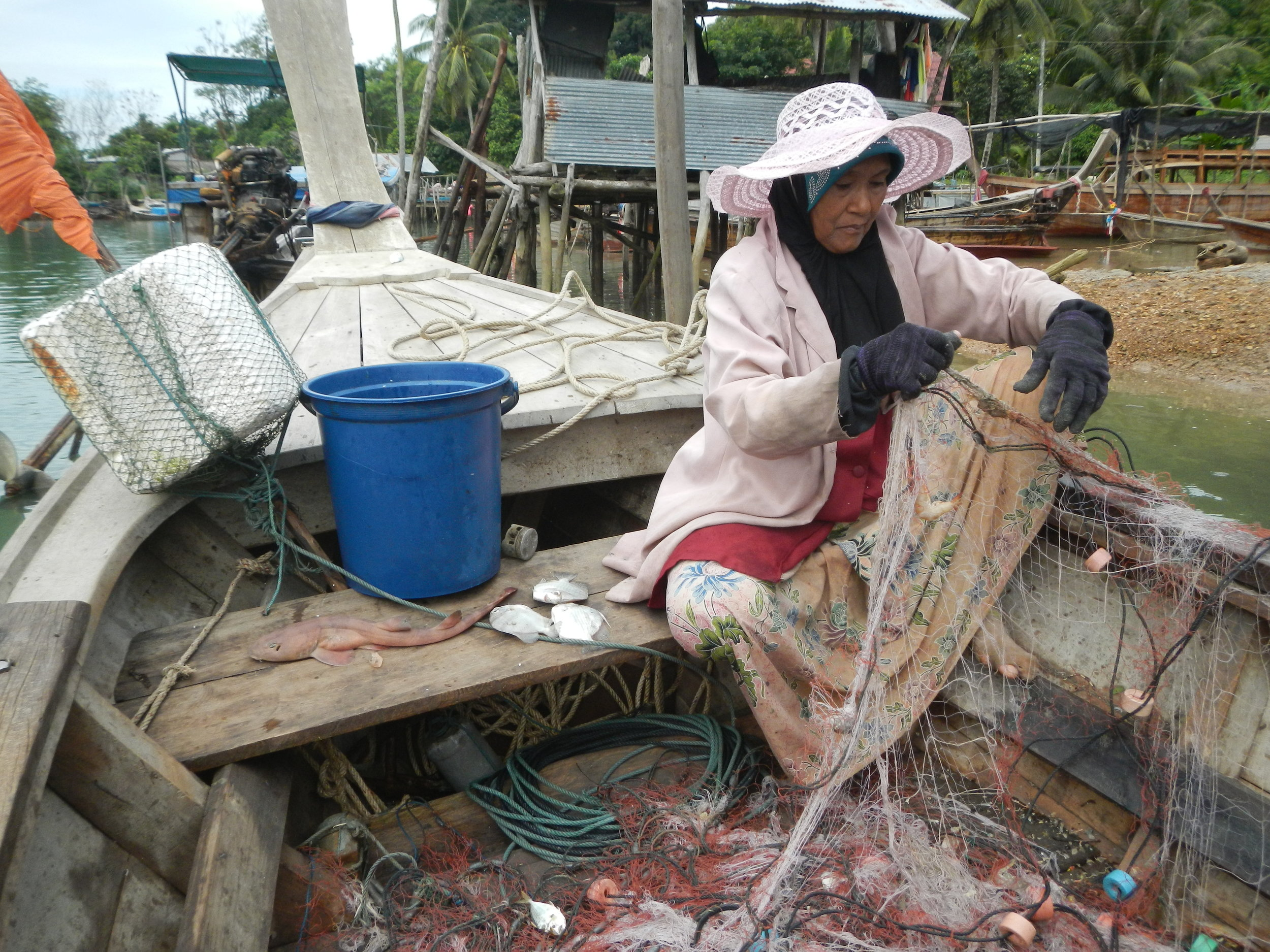 In addition to seahorses, both commercial and small-scale fishers caught numerous other non-target species. In this photo, a female fisher using a gillnet for shrimp also caught numerous small fishes and even a small shark