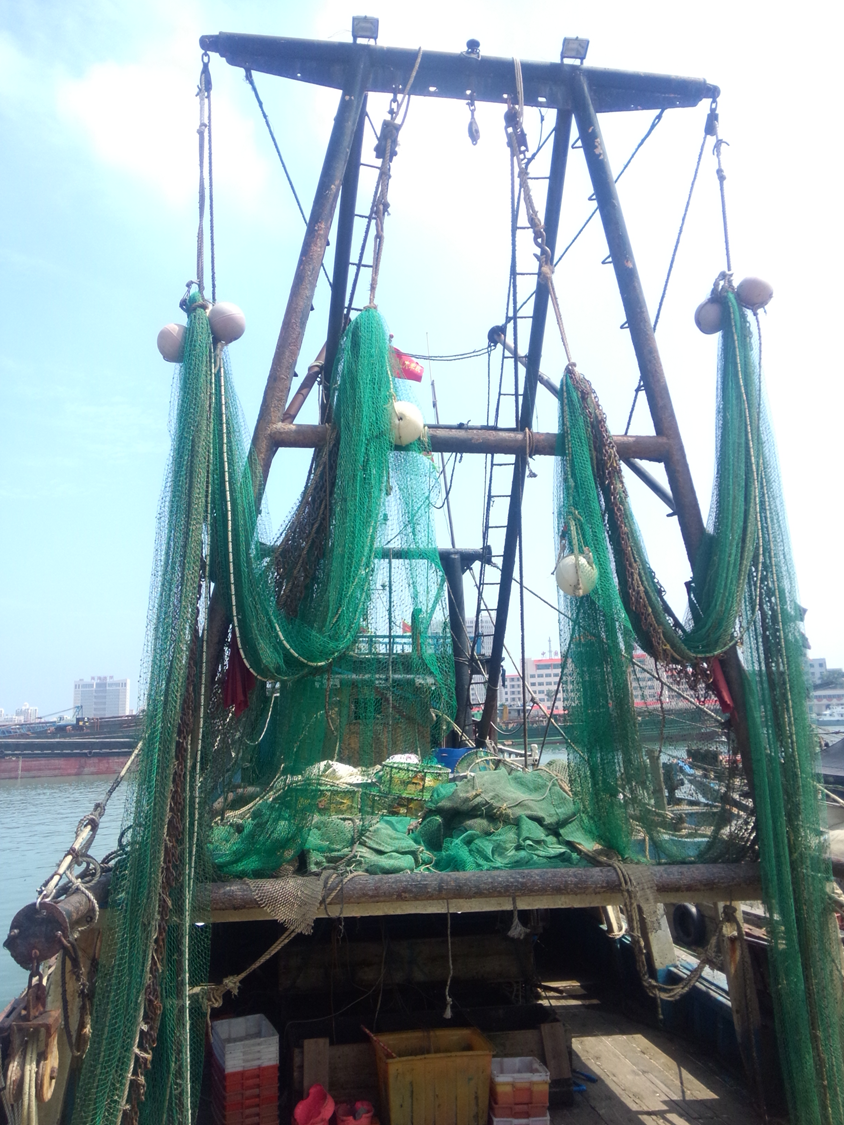 Large volumes of seahorses are caught by shrimp trawlers not only in China. This is a photo of a shrimp trawling vessel. Looking from the stern, there are two green nets with chains and floats, hanging on the steel bracket.