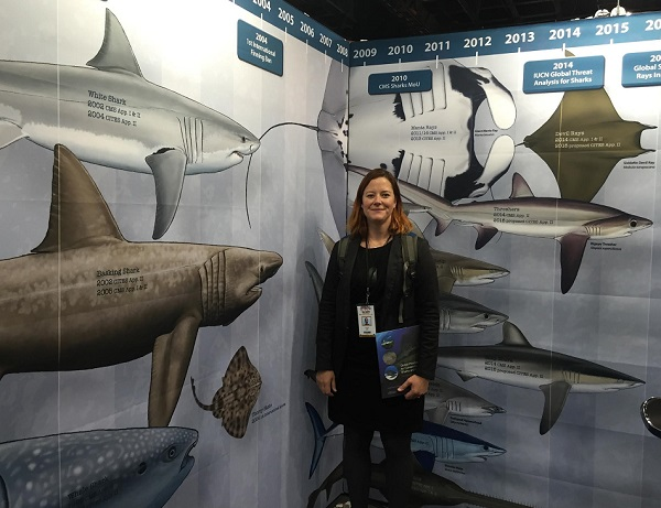 Sarah Foster surrounded by sharks for a change