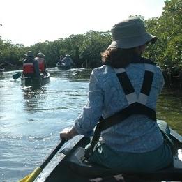BNP_mangrove_paddle.jpg