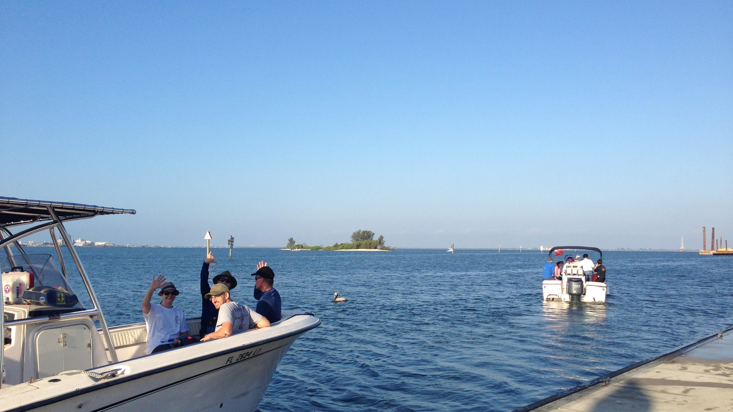 Heading out into the warm waters of Tampa Bay to participate in the BioBlitz