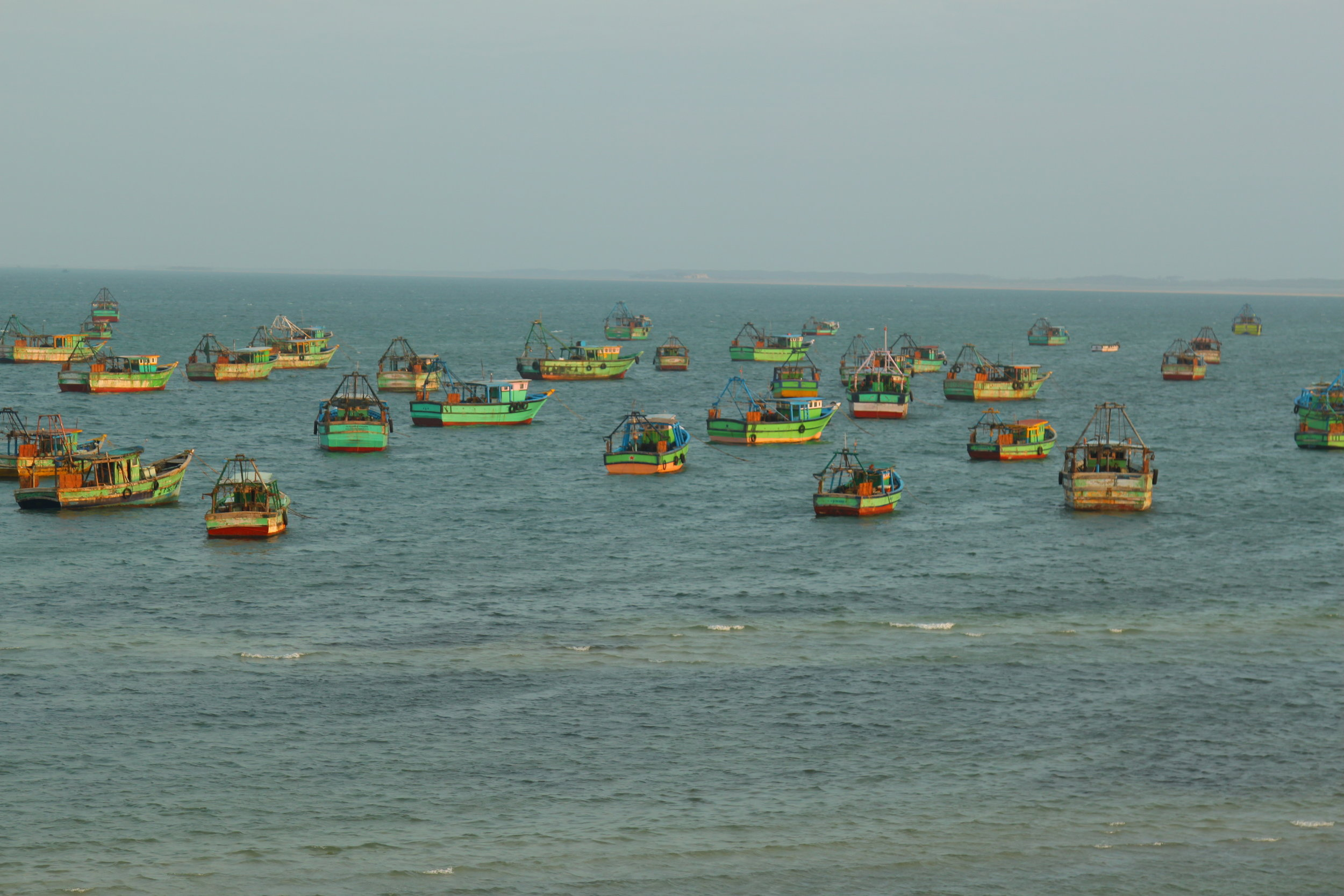 Approximately a 1000 trawlers (mainly bottom trawlers) are in operation in the Rameswaram Region catching everything in their path. Catches here are dwindling so they controversially cross over to Sri Lanka waters on a regular basis.  Photo by Tanvi Vaidyanathan/Project Seahorse.