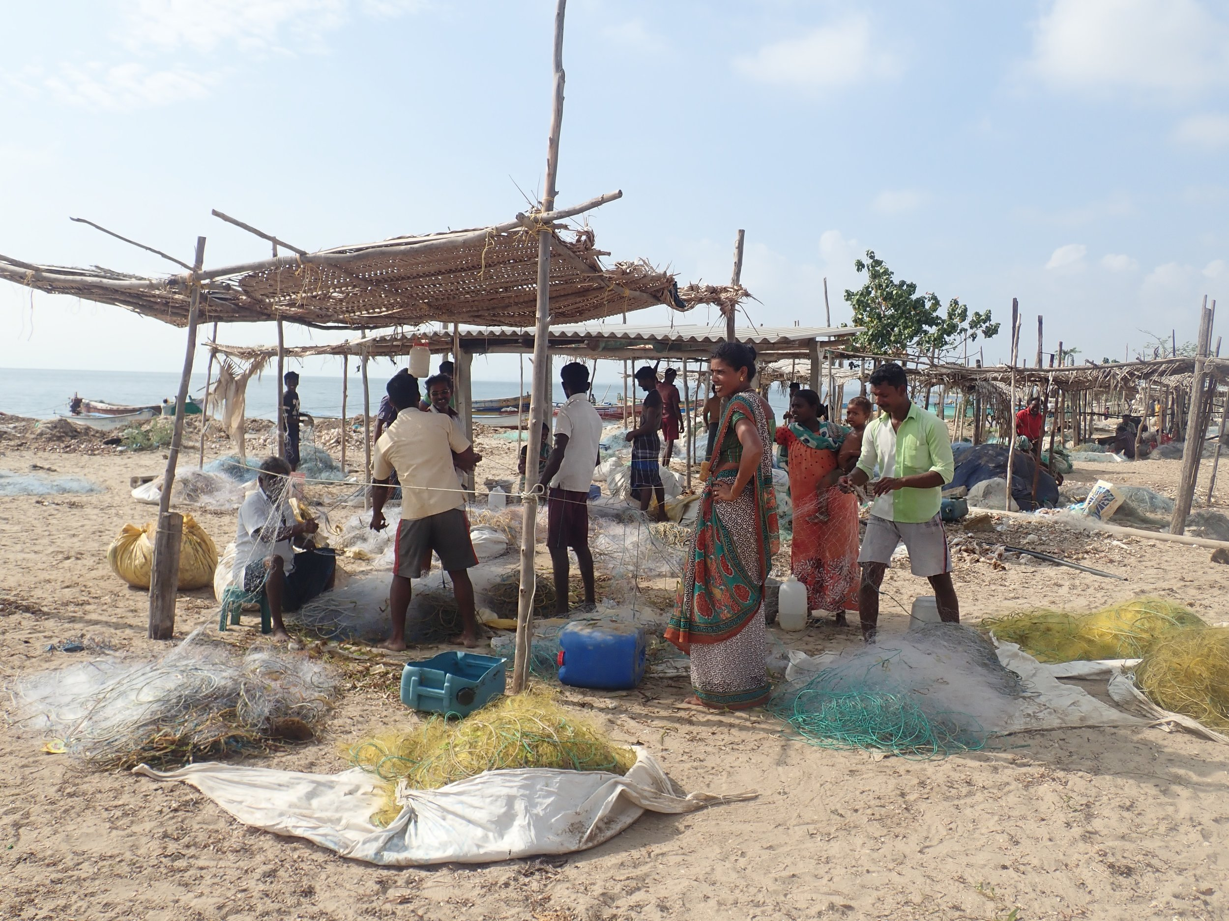 Crab gillnet fishers extract the catch at Vellapatti (Tuticorin area), India. Photo by Amanda Vincent/Project Seahorse.