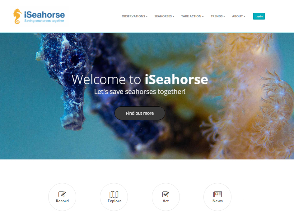 iSeahorseScreenCap.jpg