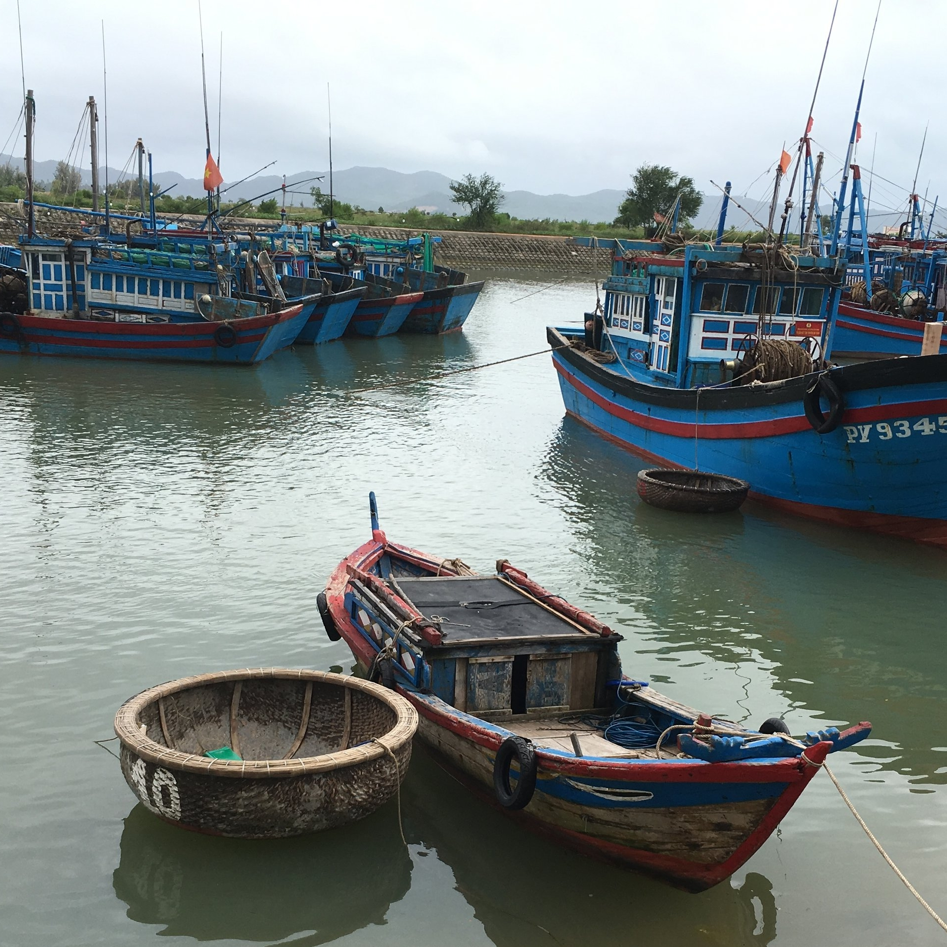 A variety of boats sit and wait in Xuan Dai Bay, Phu Yen Province. Trawl boats are in the background with a traditional basket boat in the foreground.  Photo by Do Huu Hoang.
