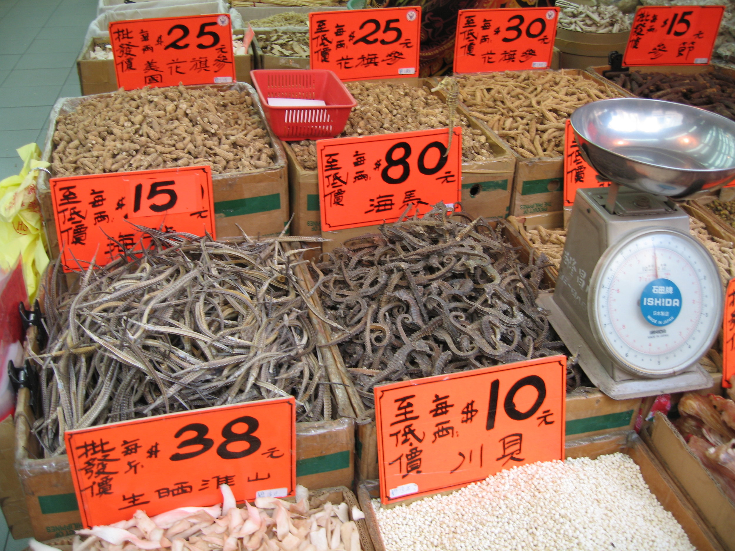 Dried pipefish and seahorses in Hong Kong market. Photo by A. Vincent/ Project Seahorse