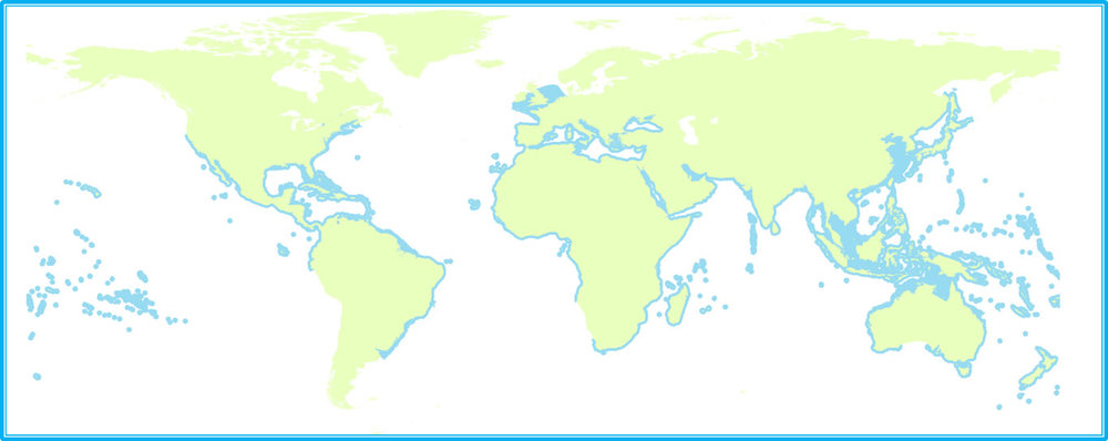 Areas with blue shading are where seahorses live. ( Source: Riley Pollom/Project Seahorse )
