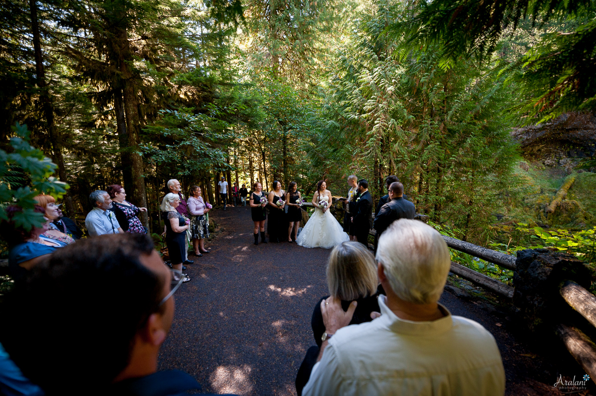 Sahalie_Falls_Waterfall_Wedding0005.jpg