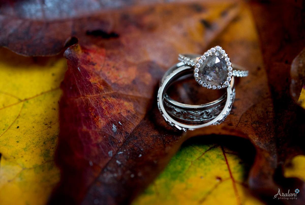 Autumn Wedding Rings