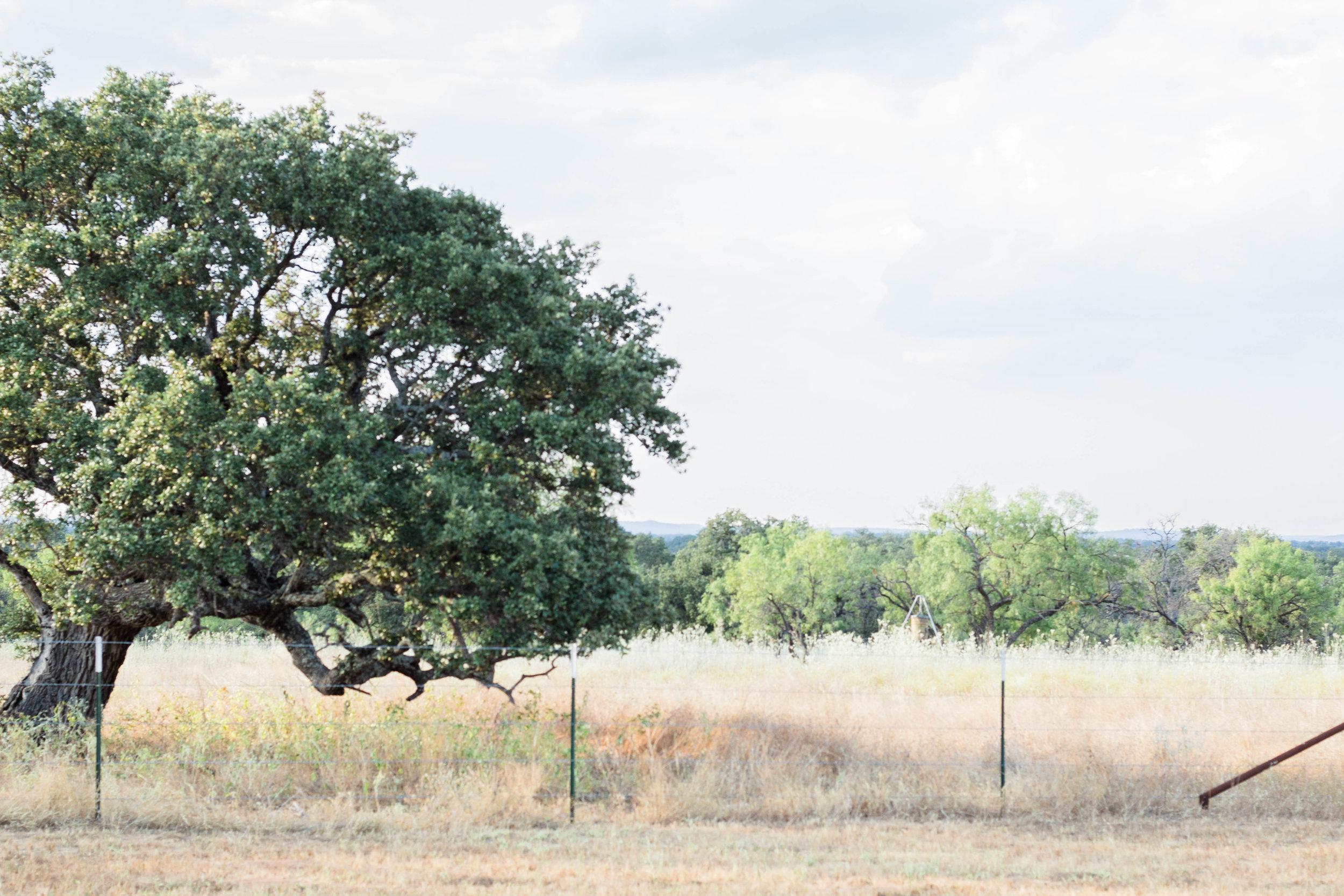 RanchSeptember-37.jpg