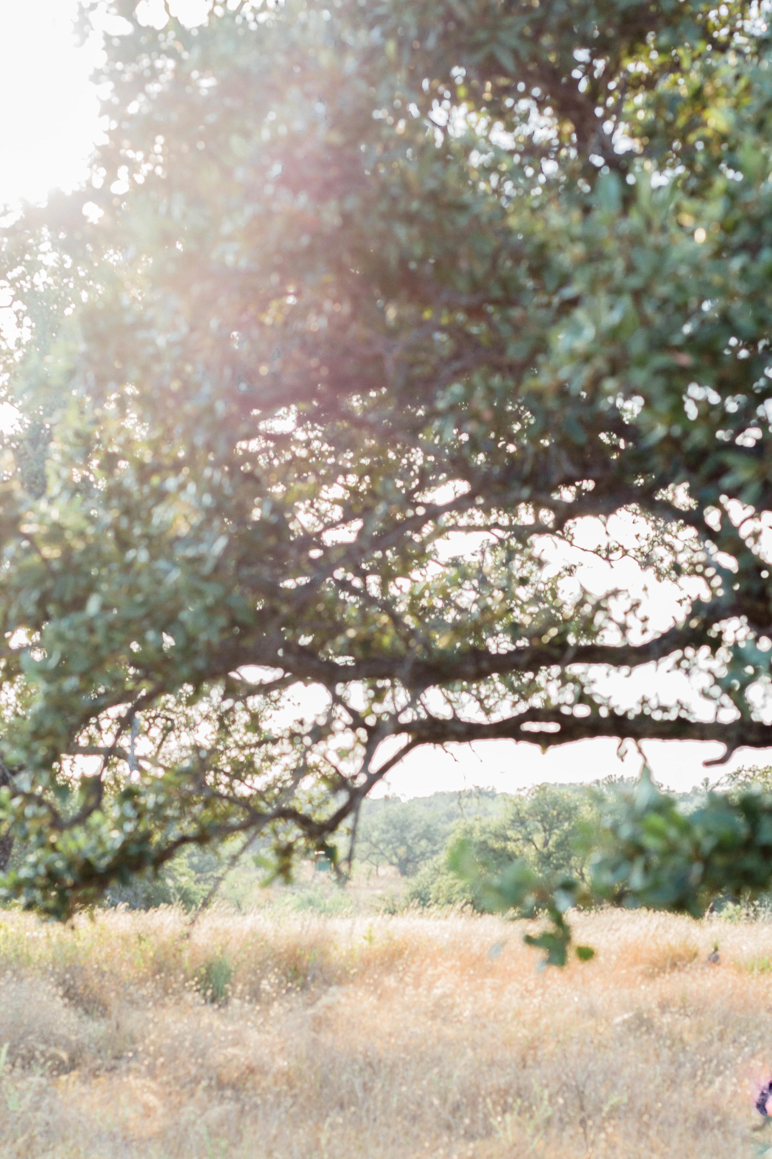 RanchSeptember-45.jpg