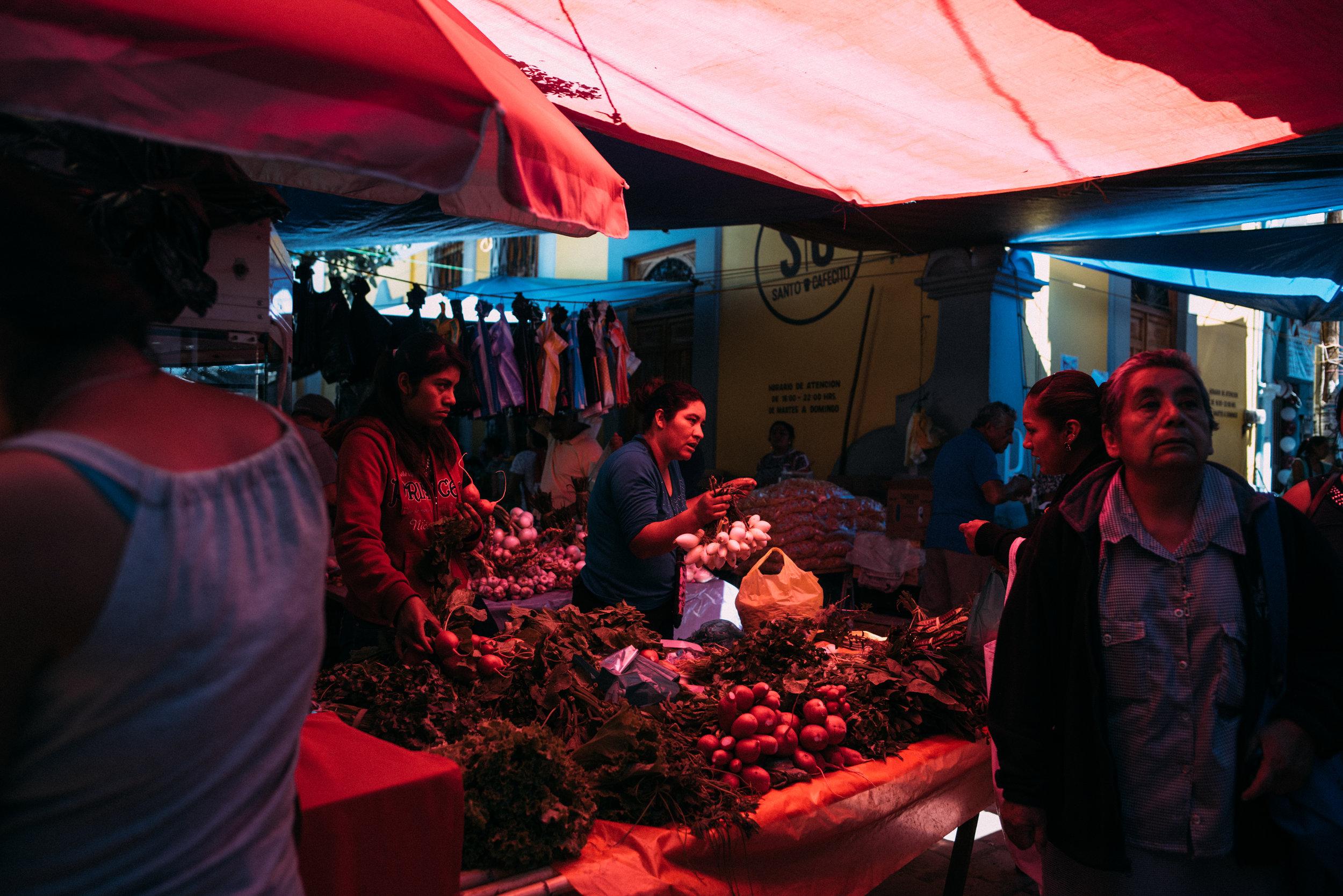 180625_Oaxaca_DustinFranz_Color_060.jpg