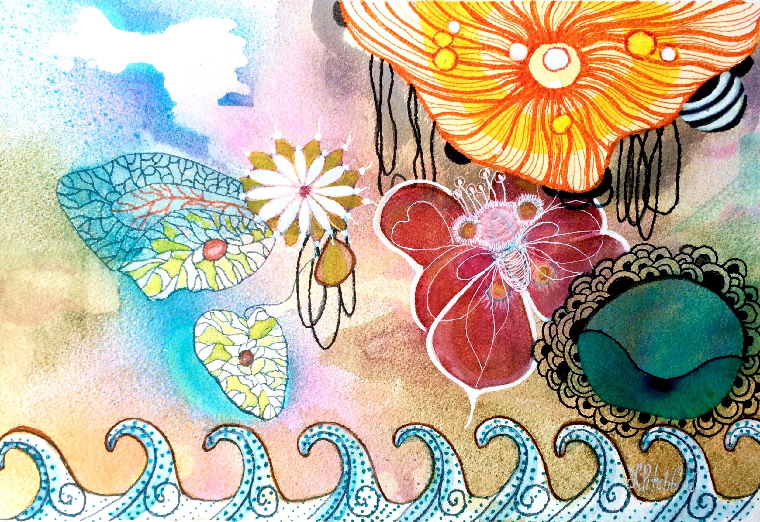 sea-butterfly.jpg