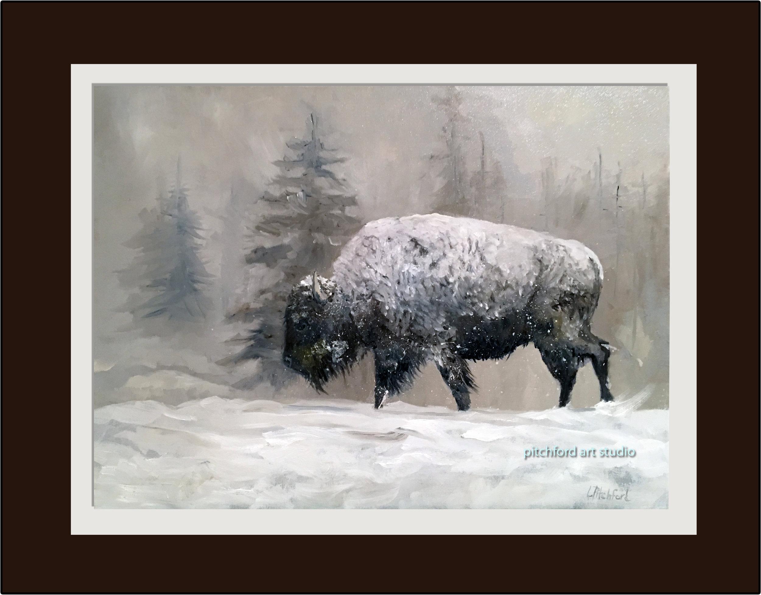 Winter Buffalo - Not Available