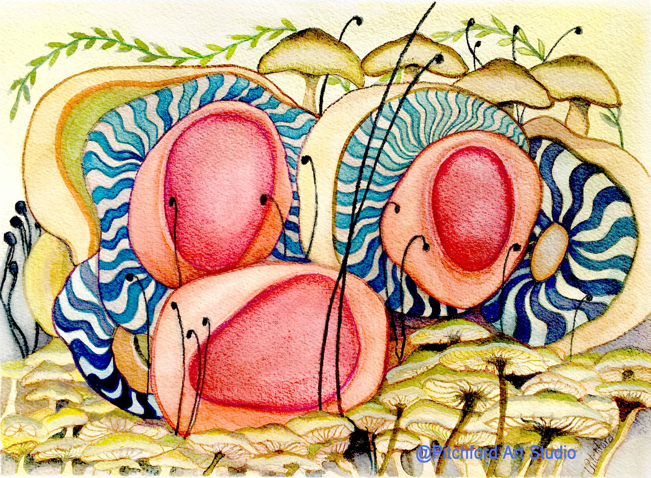 Pin Wheel Mushrooms