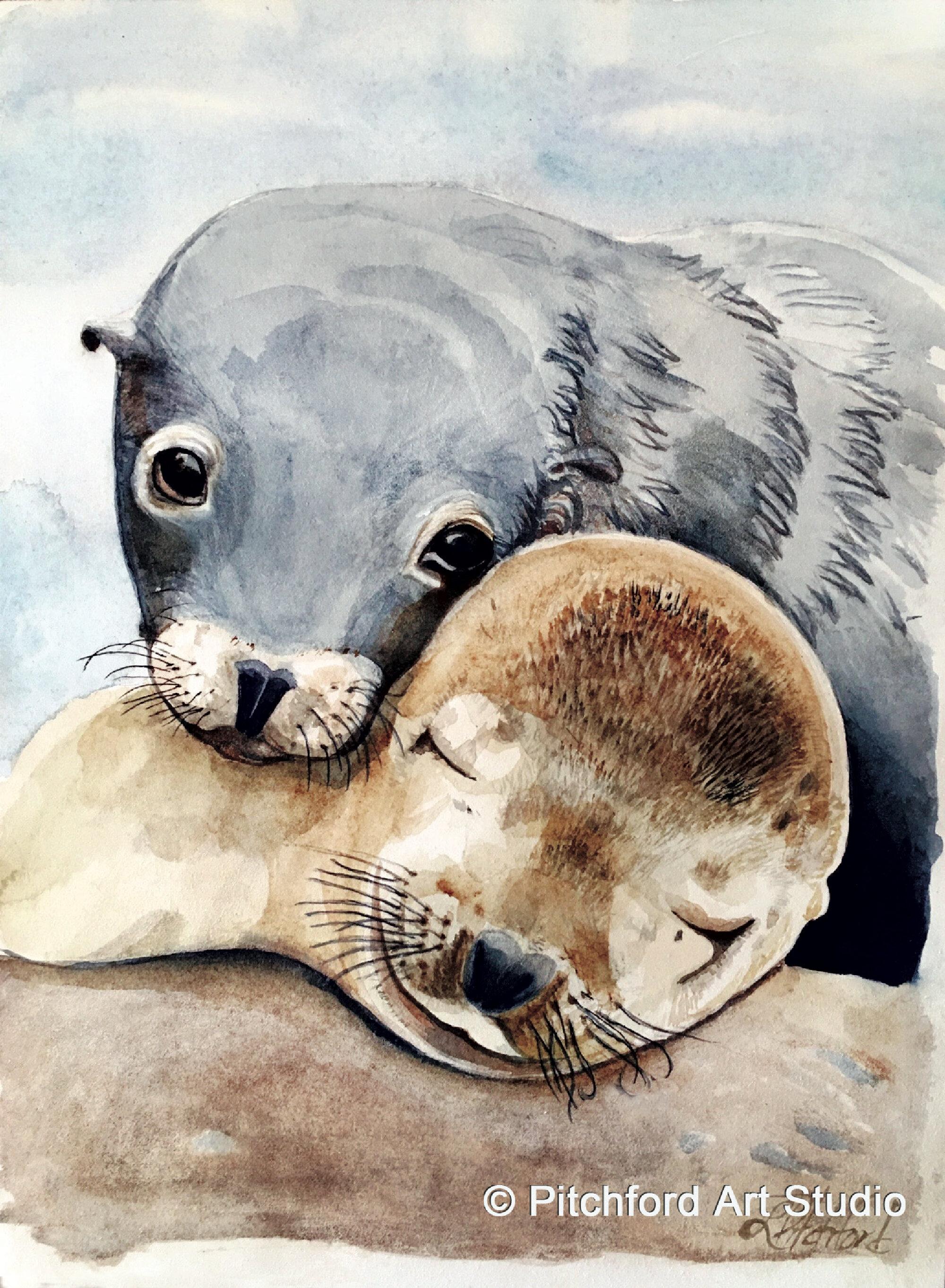 Seal-love