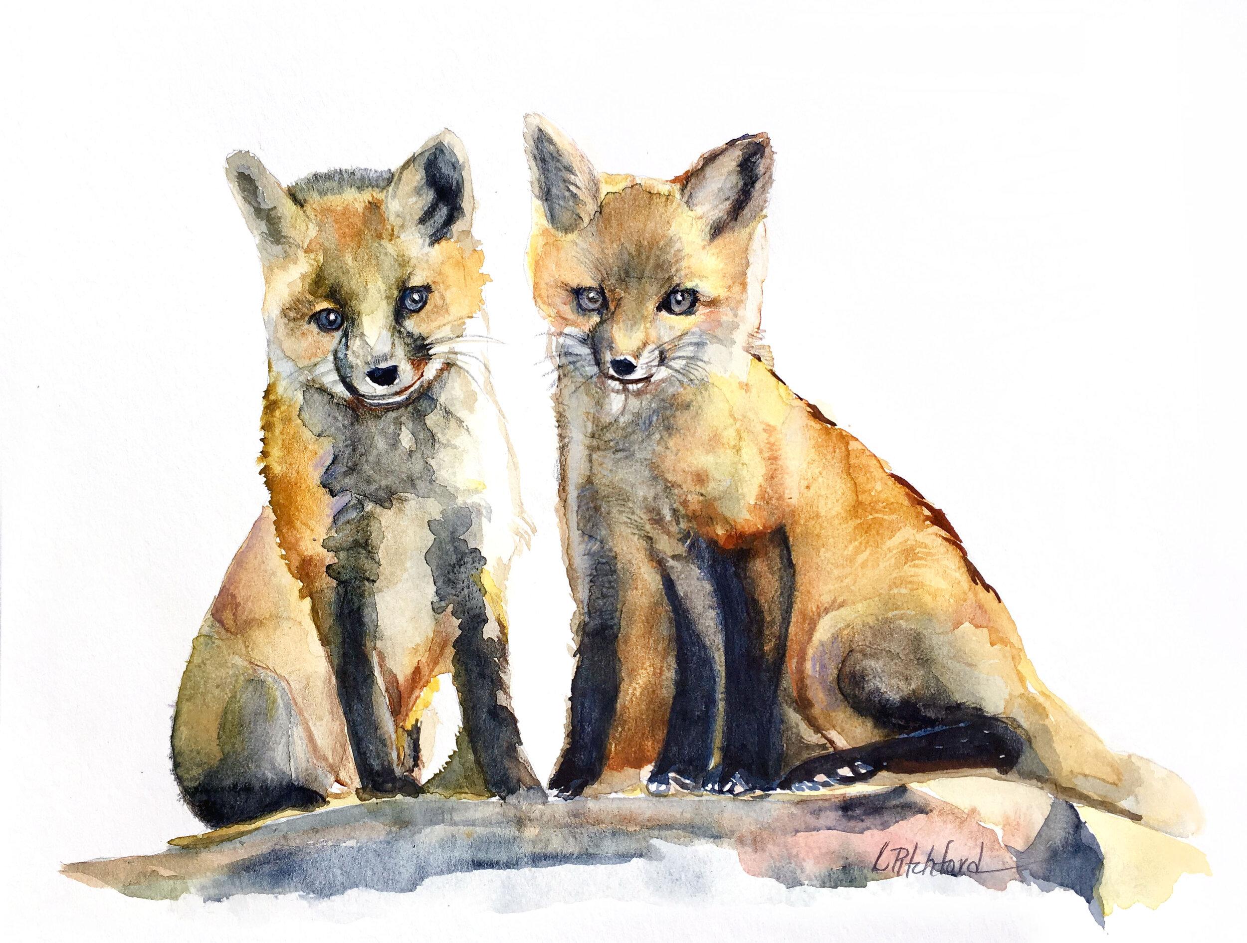Junior Foxes