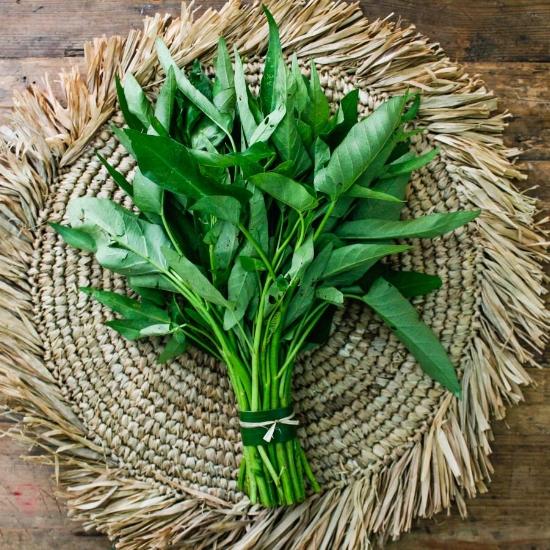 Fresh kangkong / Photo cred: Holy Carabao