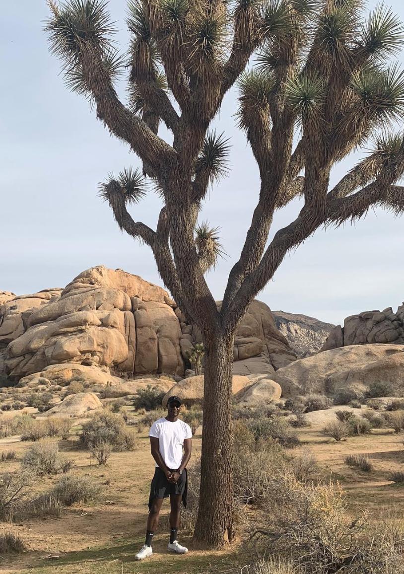 Joshua Tree - Via Patrick's Instagram