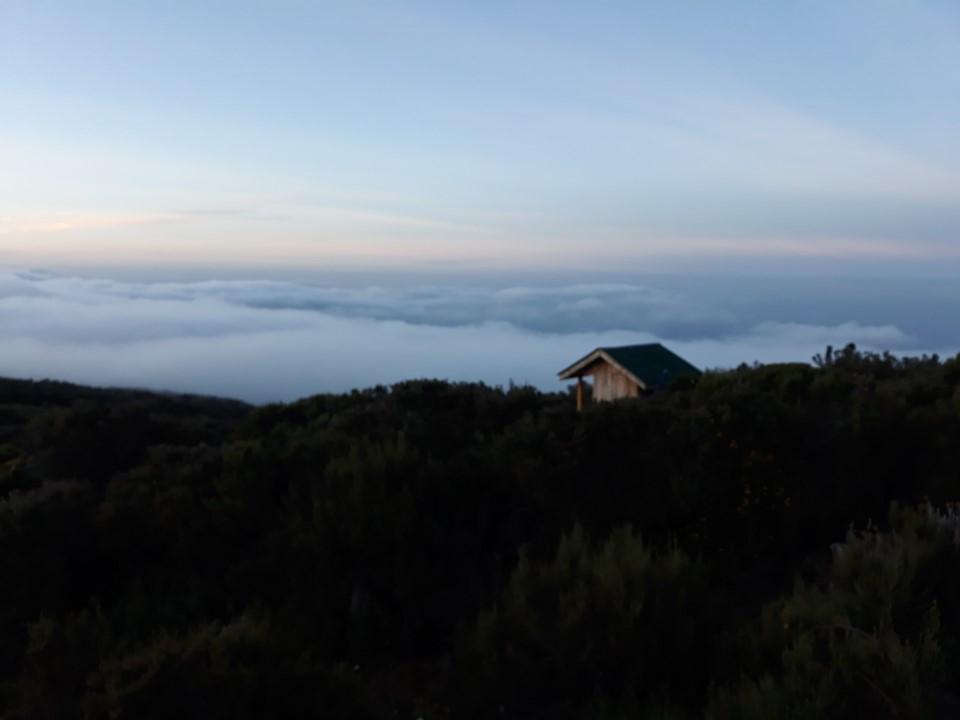 The journey up Kilimanjaro māunga_Image 10.jpg