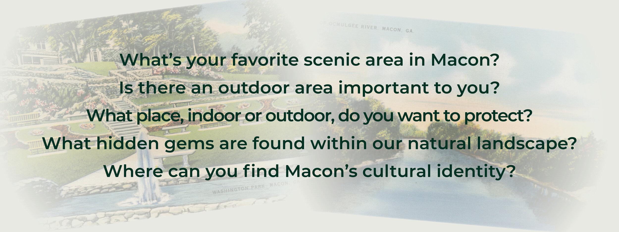 Macon SPI_Survey Questions.jpg