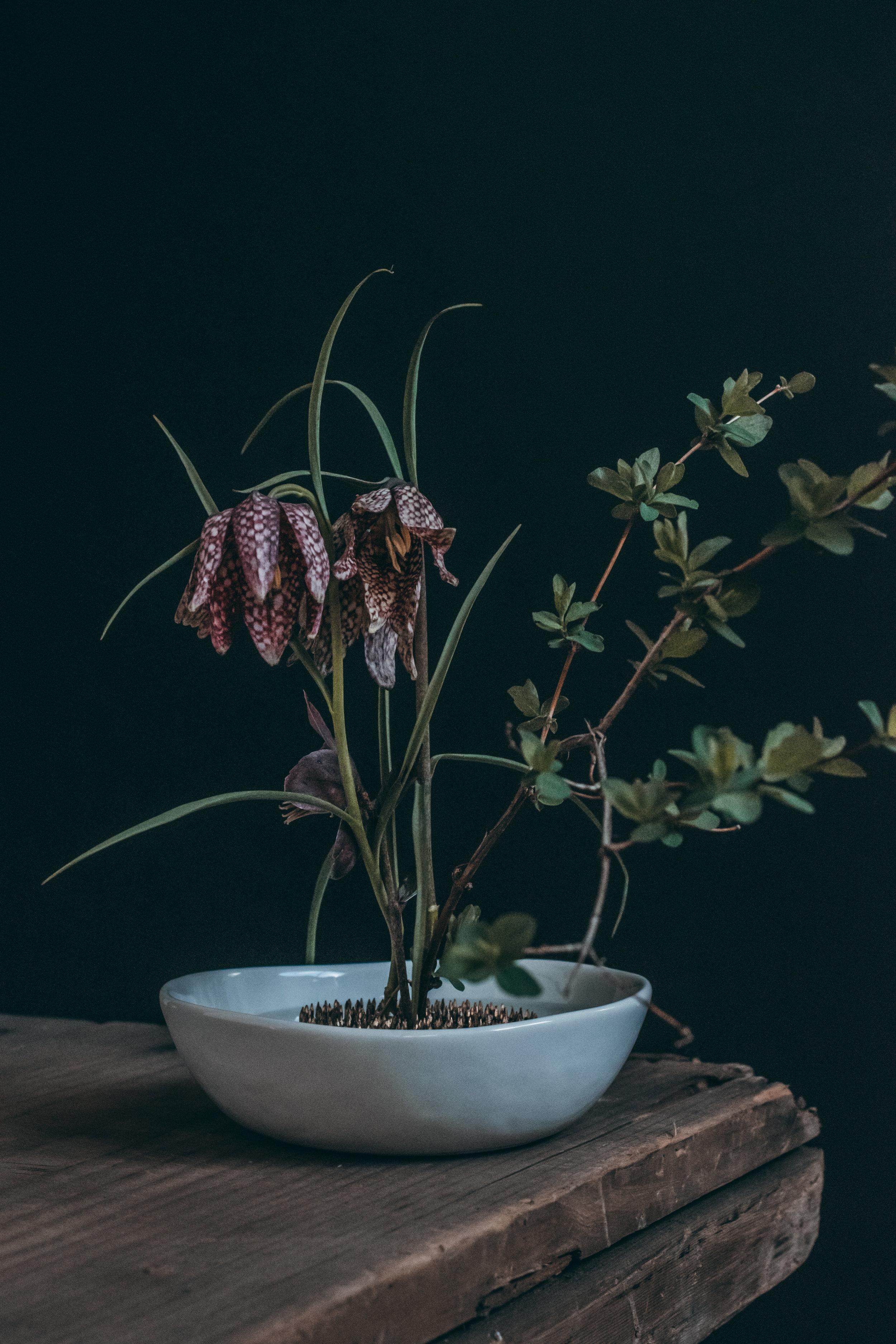 Beehive Floral-0154.jpg