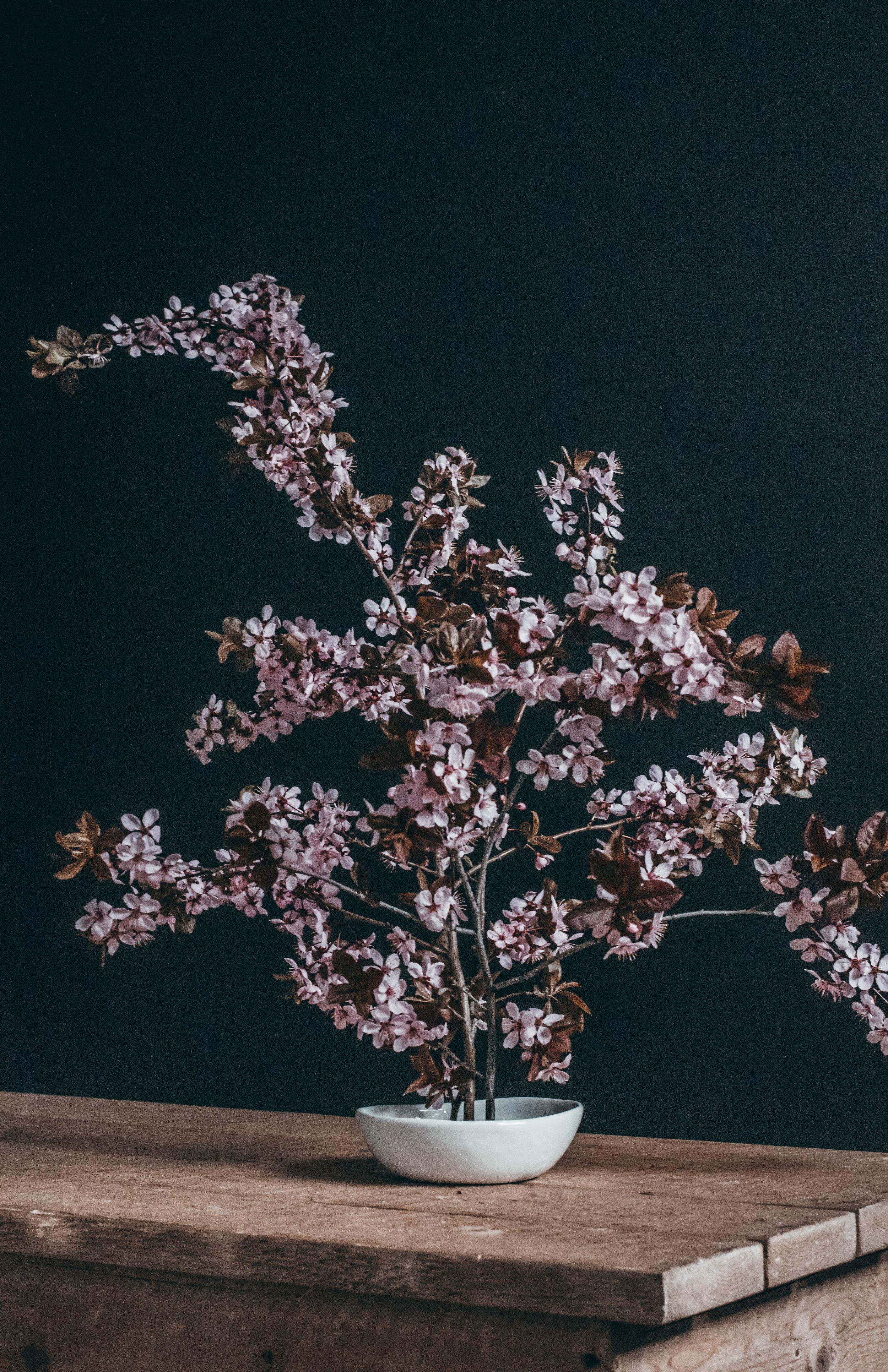 Beehive Floral-0188.jpg