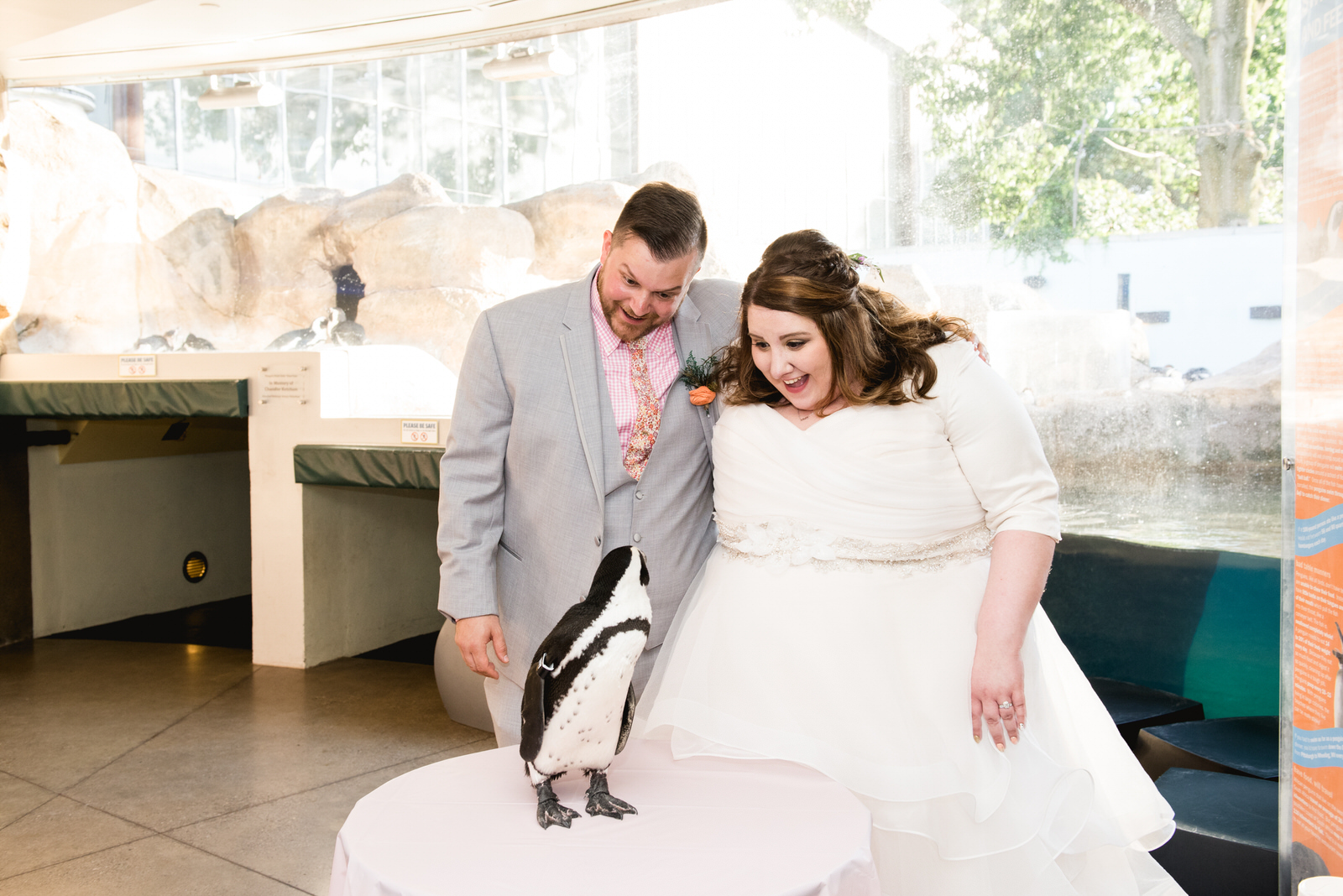 Pittsburgh_National_Aviary_Wedding_Photos_29.jpg