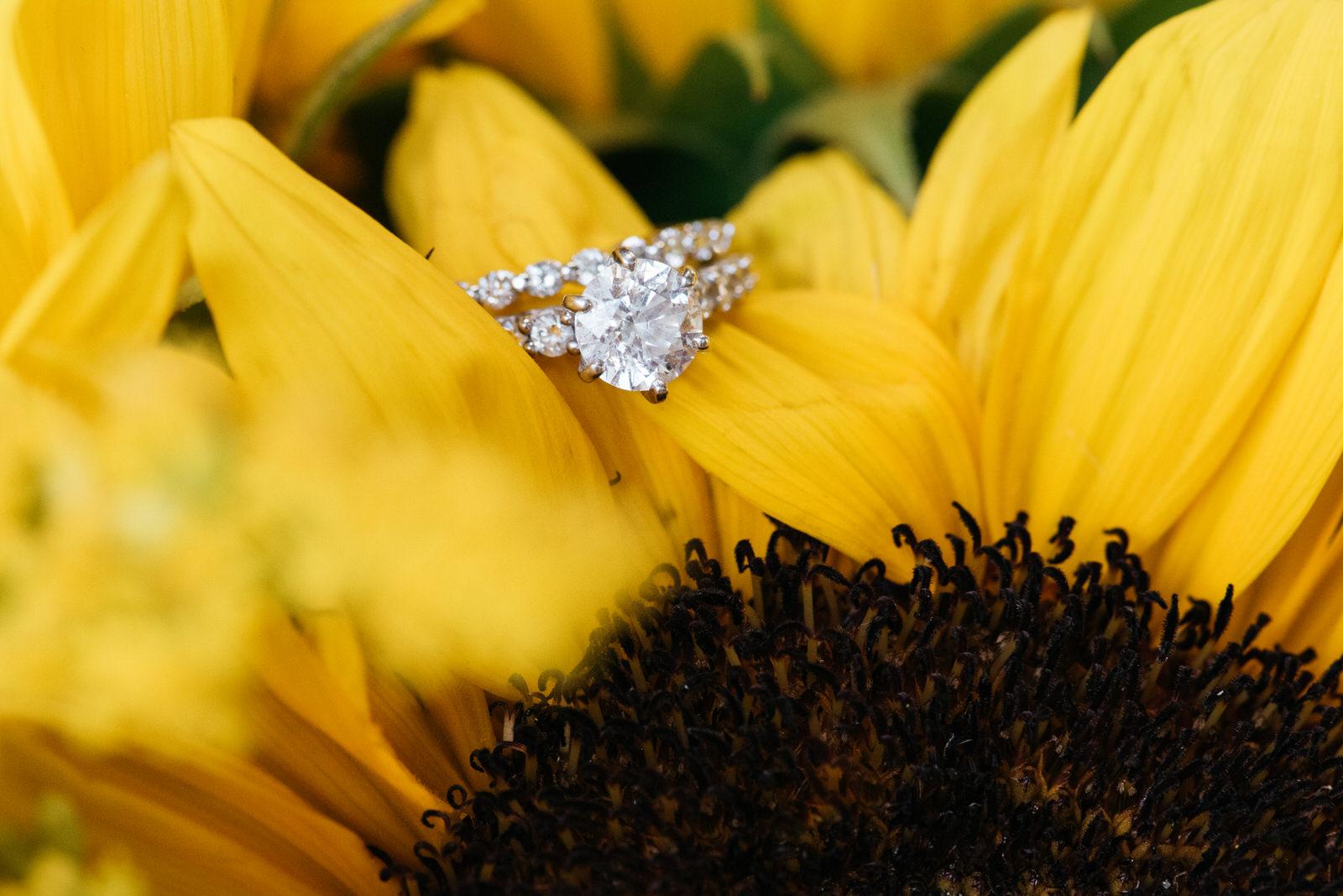 destiny-hill-farm-wedding-photos-pittsburgh-wedding-photographers-36.jpg