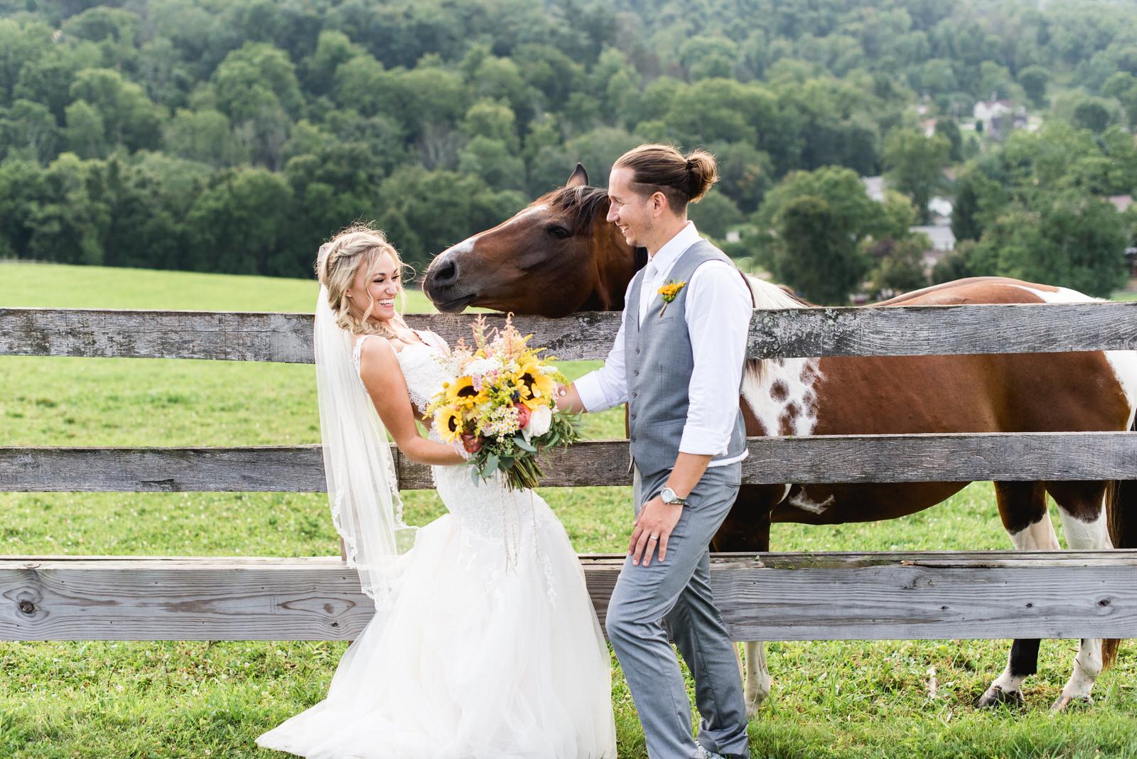 destiny-hill-farm-wedding-photos-pittsburgh-wedding-photographers-64.jpg
