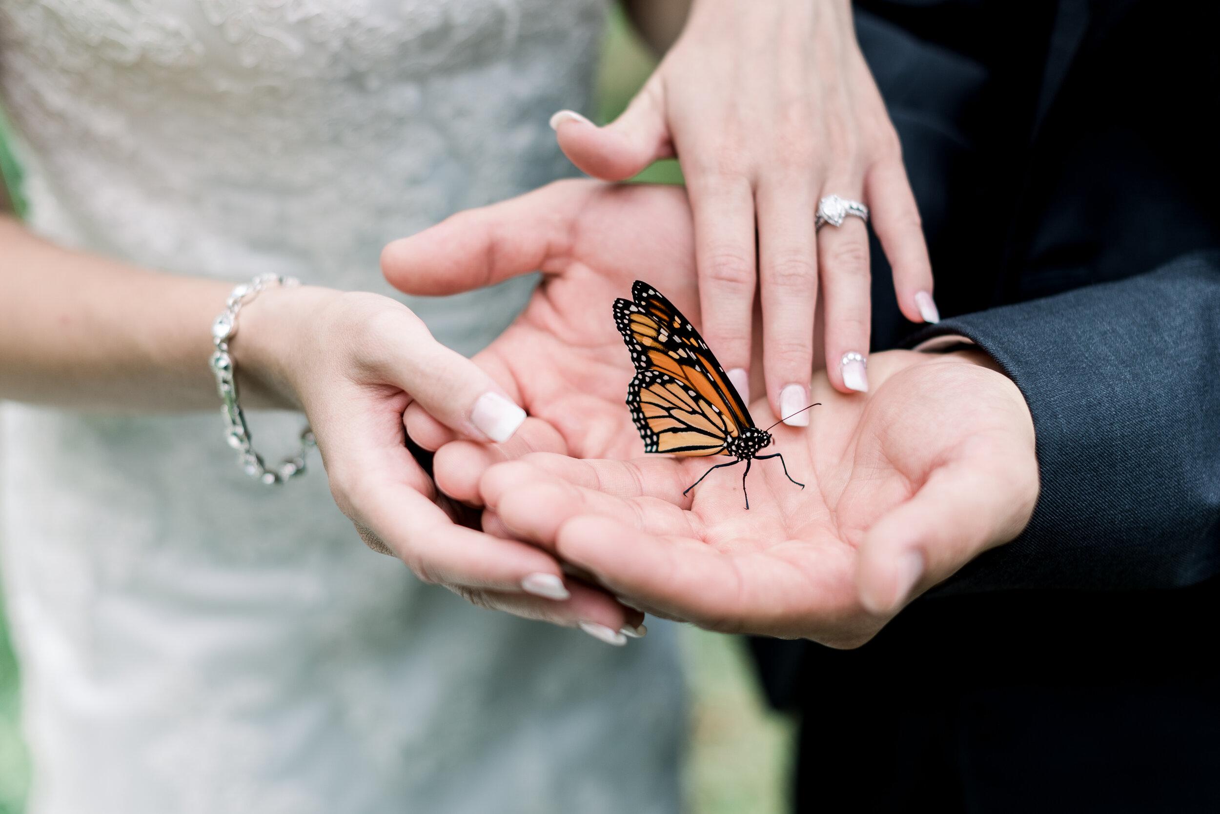 Pinehall-At-Eisler-Farms-Wedding-Ashley-Reed-Photography-110.jpg