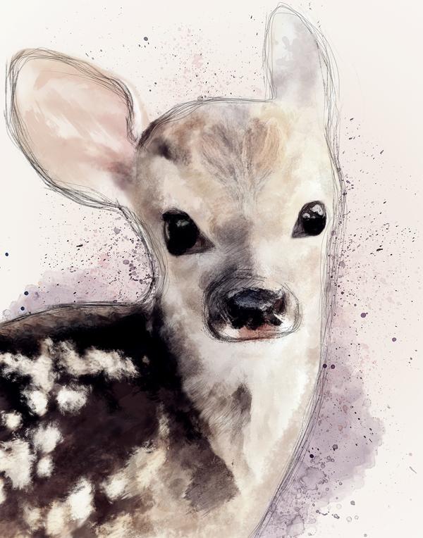 Aleksander Nowak, For My Dear Deer