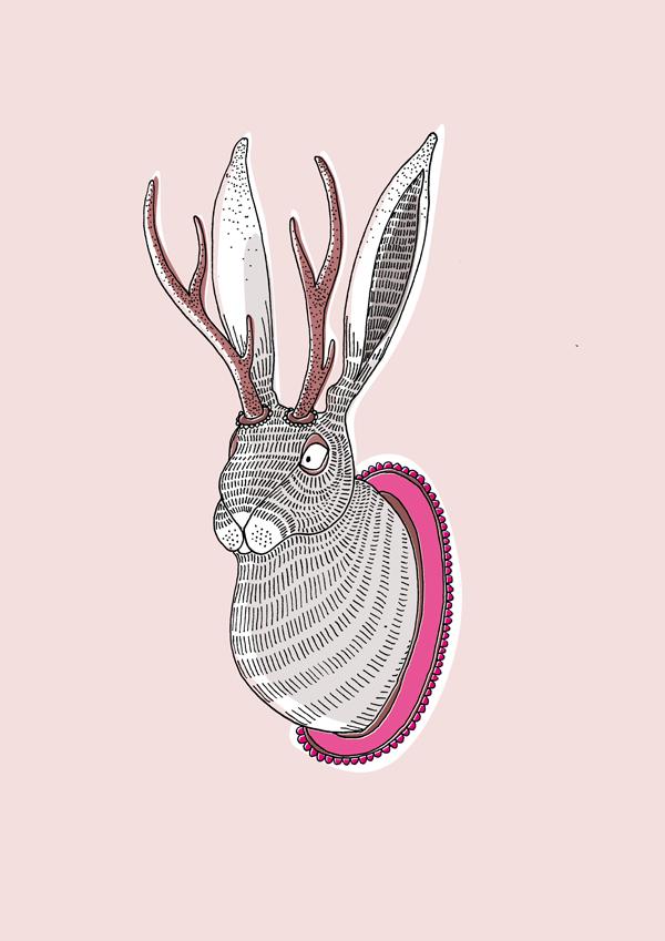 Andrea Forgacs, Deer Rabbit