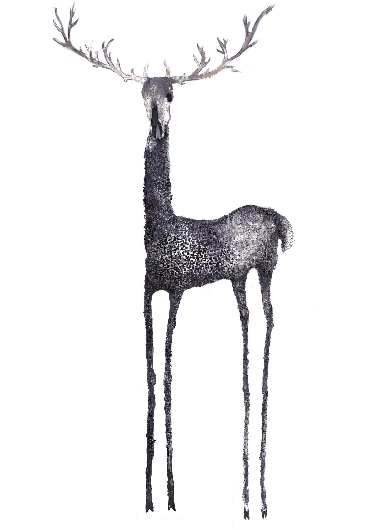 Bárbara Cachán, Dear Poor Deer