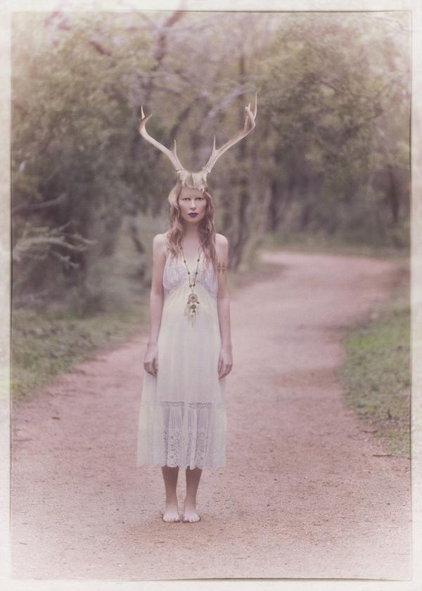 Molly Rogers,  Yes Dear Deer