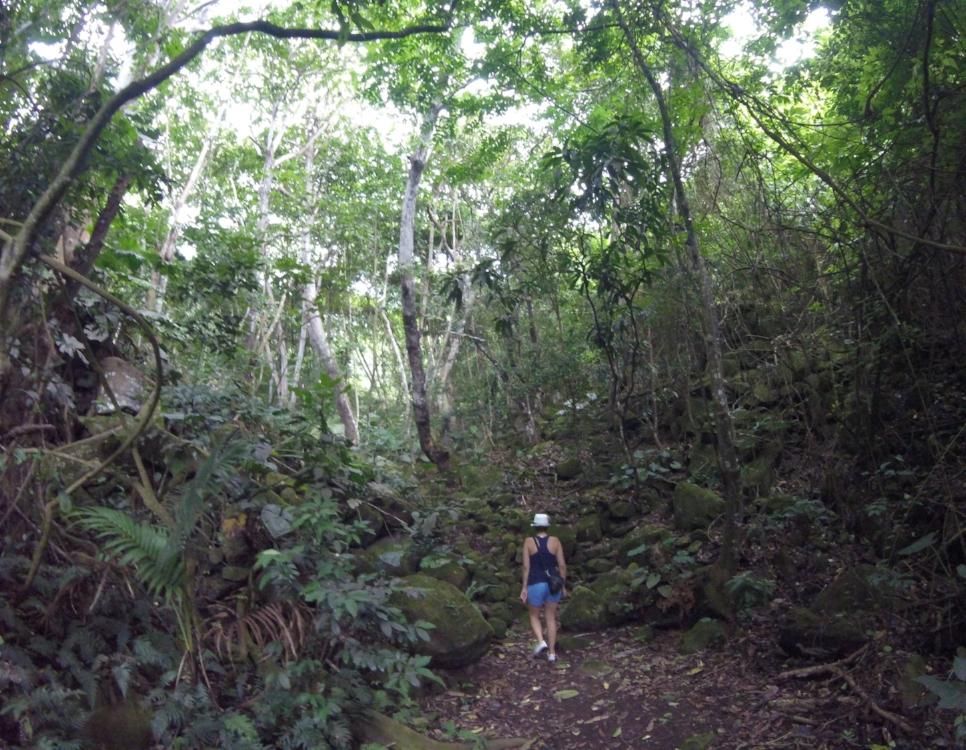 hiking-saba