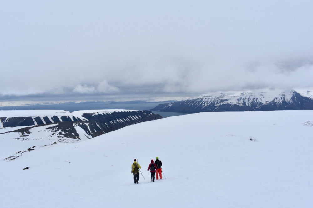 The view from Lars Glacier