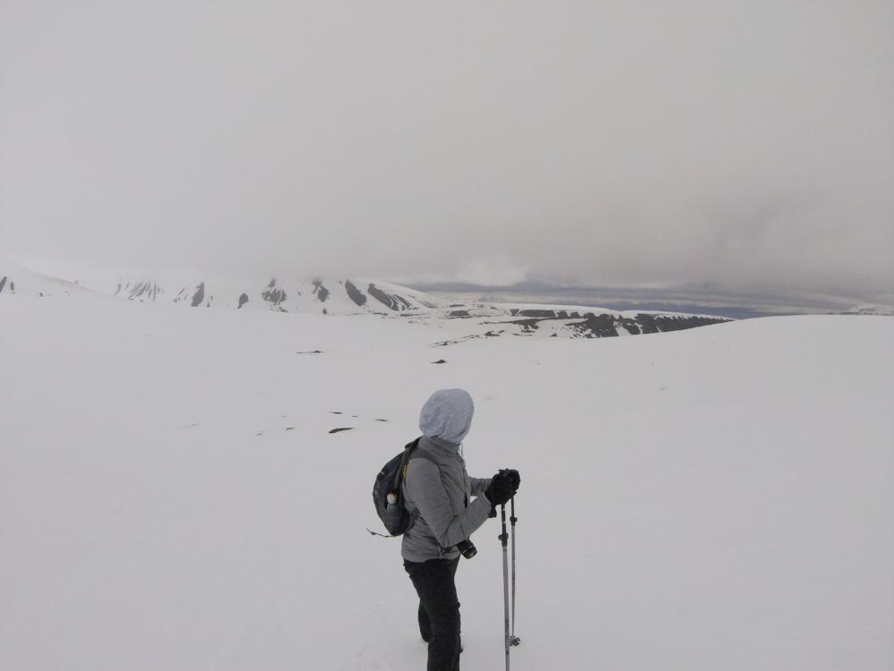 wildlife-adventures-svalbard-high-arctic-circle