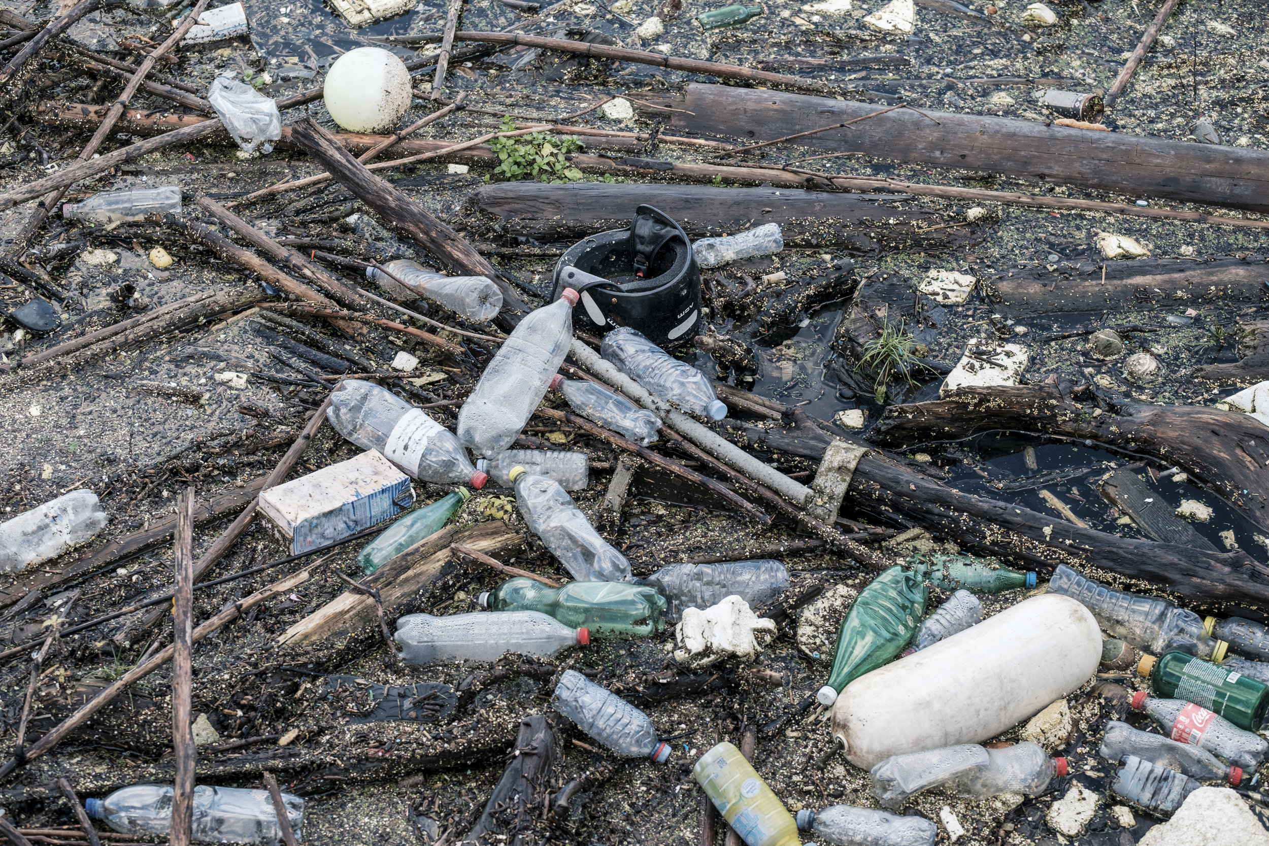plastic littering the forest
