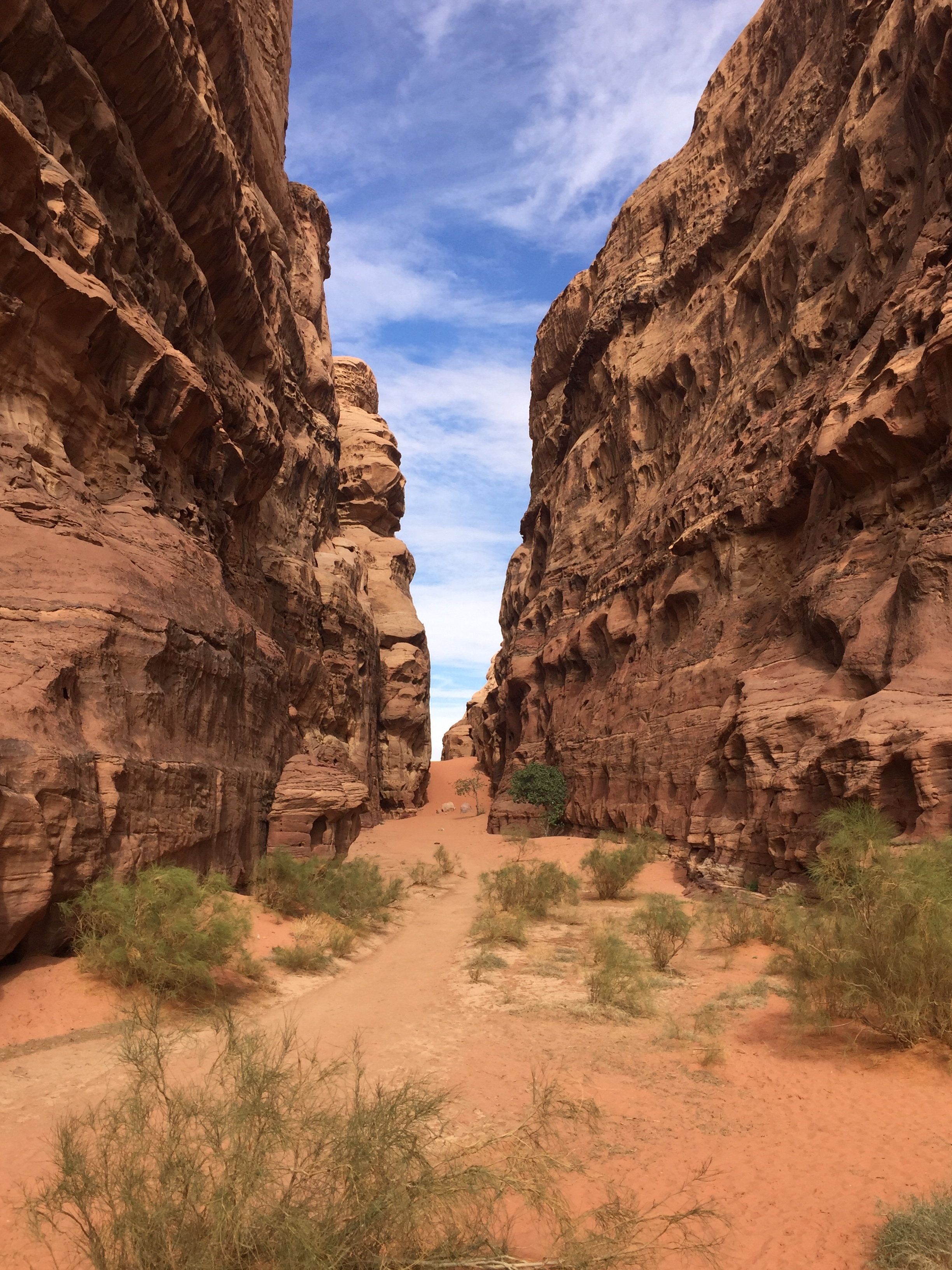 We were dropped off by the guide and told to walk through this canyon. It was one of the few times we were completely alone is the vast desert landscape.