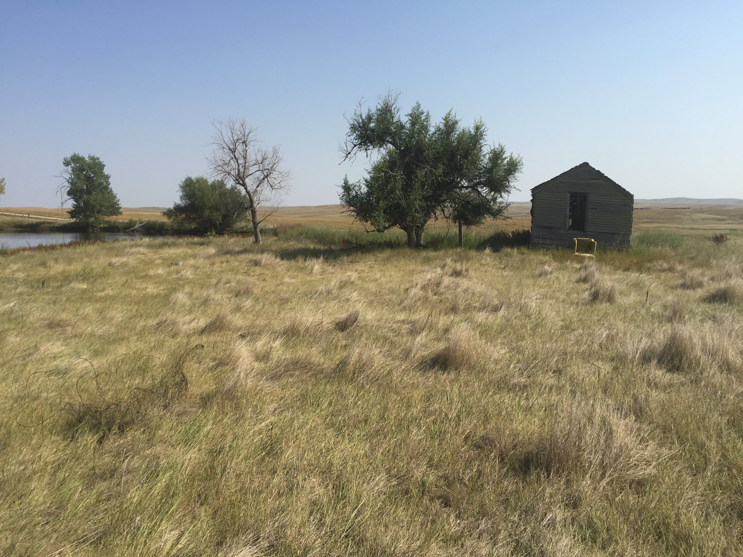 The site of the homestead house near Ardmore, SD where my grandmother grew up, 2015.
