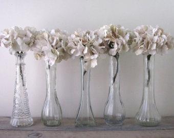 cozy-glass-bud-vases-instant-E7BtB.jpg